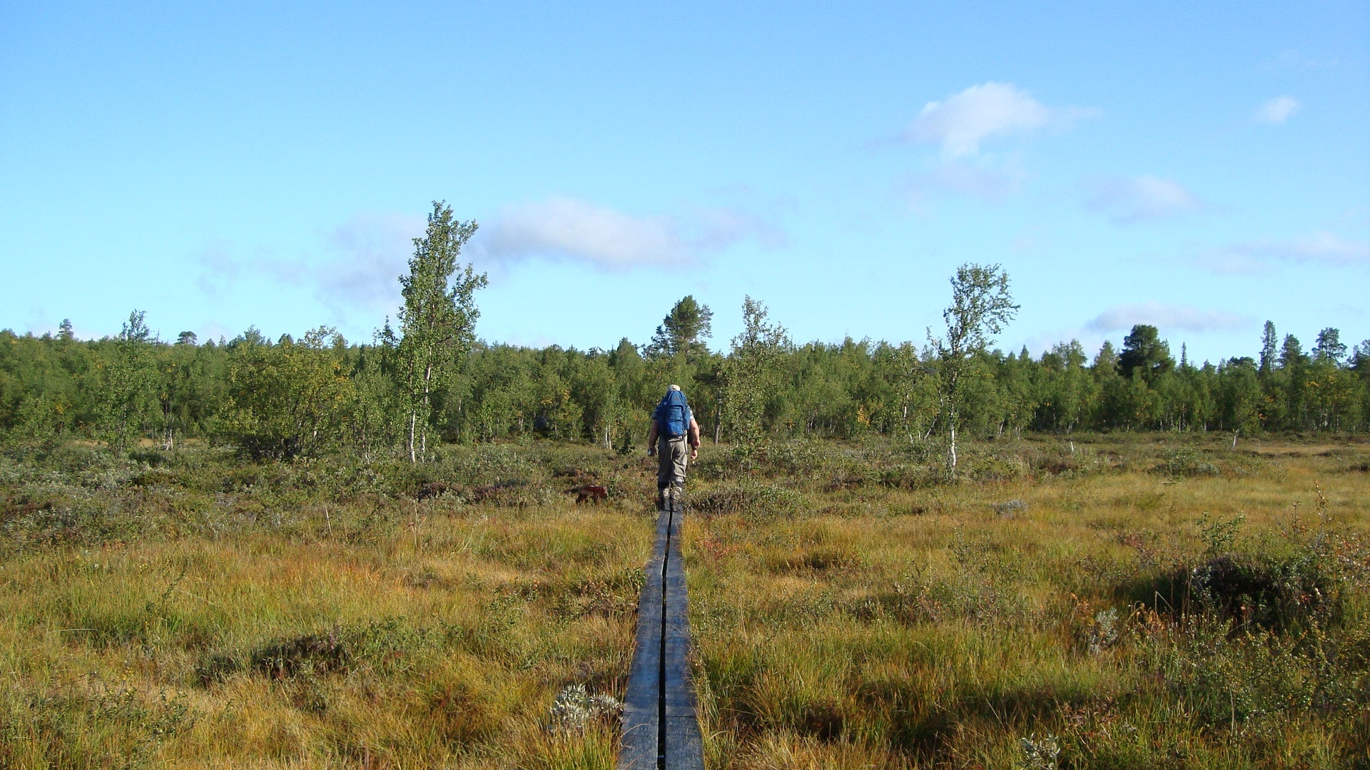The Kungsleden hiking trail was founded at the end of the 19th century by the