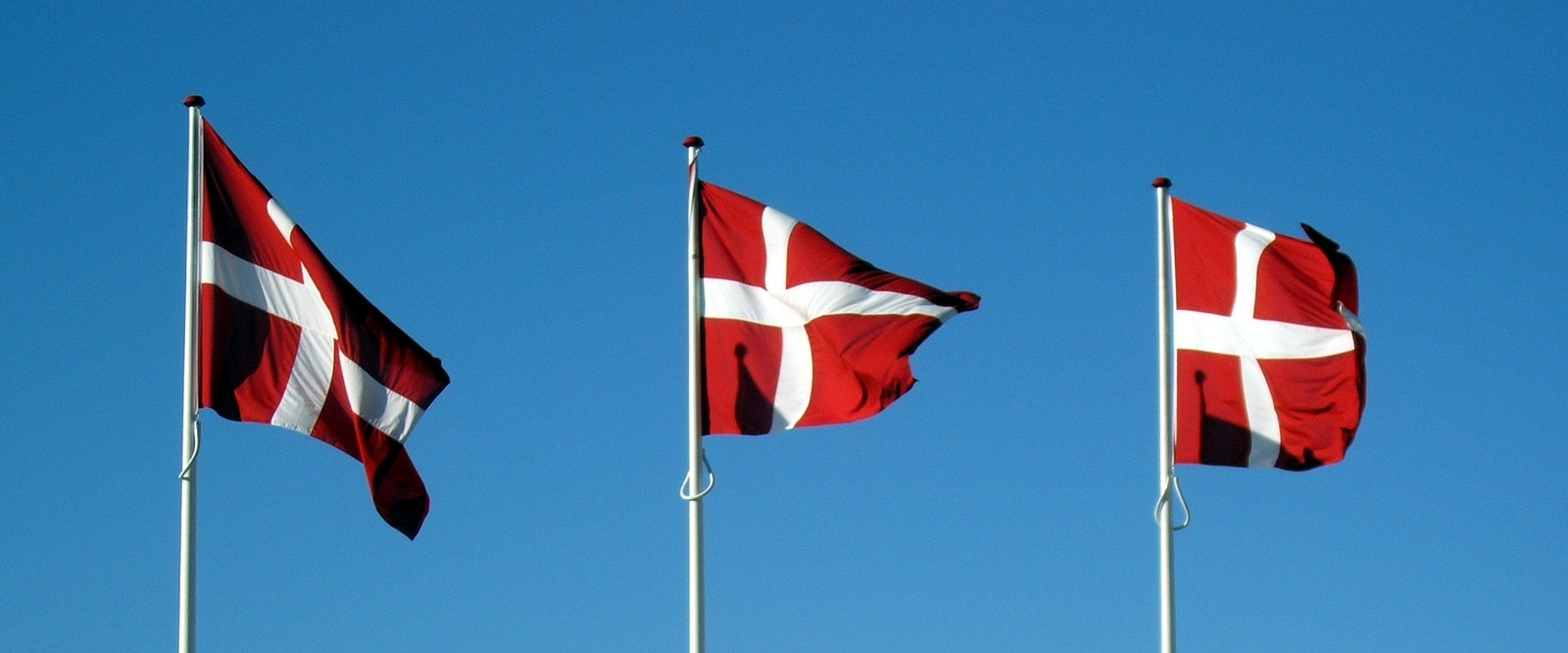 It is the oldest country flag that is still in use: the Dannebrog. This is Danish for Danish banner or cloth. The flag is mentioned for the first time in a source from the 14th century.