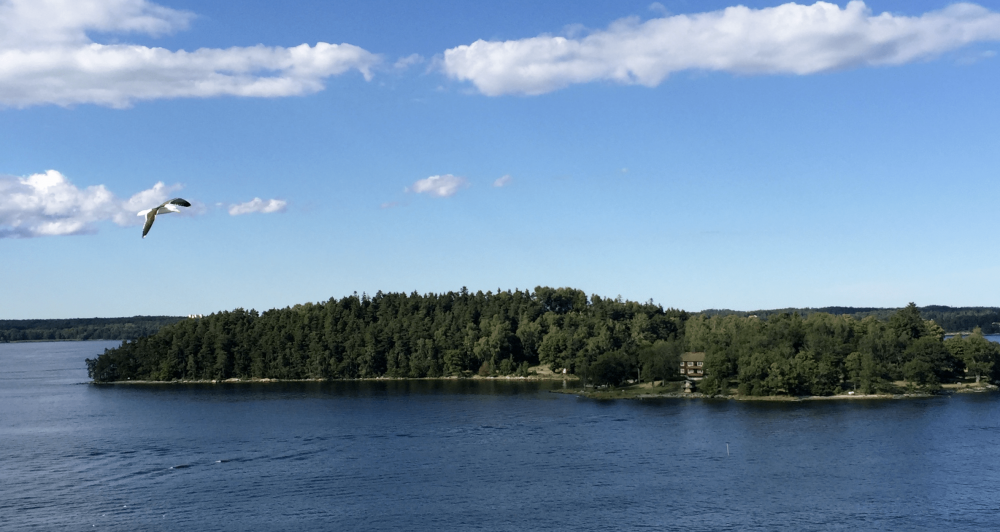 Delsjön is a 3200 acre park/nature reserve that makes a great day trip from the city.